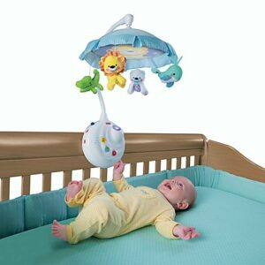Fisher Price Precious Planet 2-in-1/Best Baby Crib Accessories: A Guide
